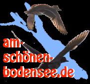 www.am-schönen-bodensee.de