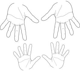 Zwei Paar Hände zeigen 20 Finger
